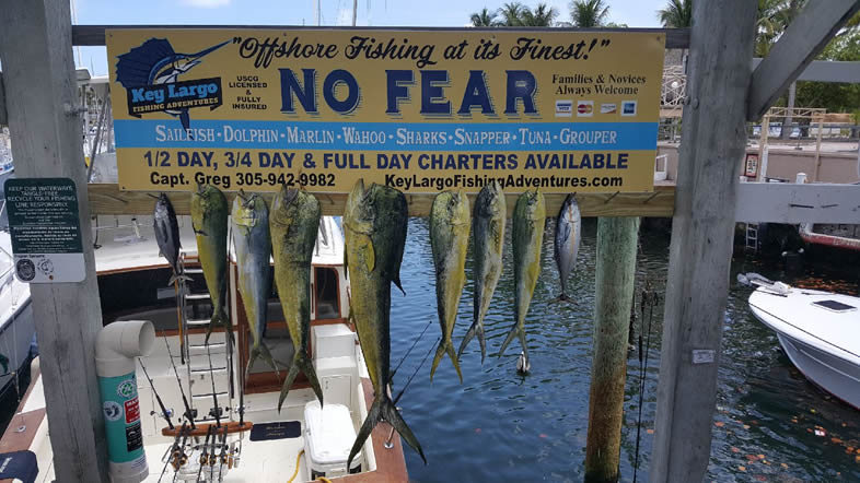 Key largo fishing charters 4 key largo sport fishing for Key largo fishing guides